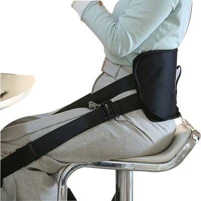 ergolution back up ergonomic back support zoomed in