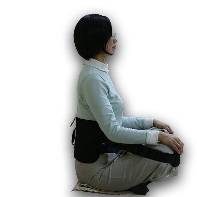 ergolution back up ergonomic back support side view