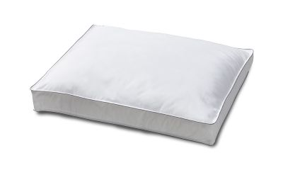 ergolution premium pillow for sale